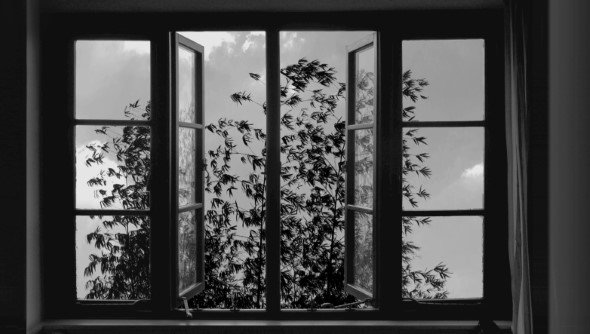 廿四格電影圖片 - 24FRAMES_KIAROSTAMI_PHOTO4_1531926140.jpg