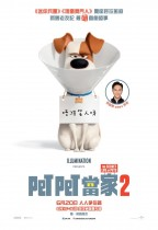 Pet Pet當家 2 (英語版) (The Secret Life of Pets 2)電影海報