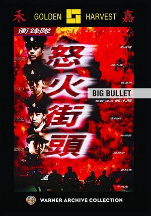 衝鋒隊:怒火街頭電影海報