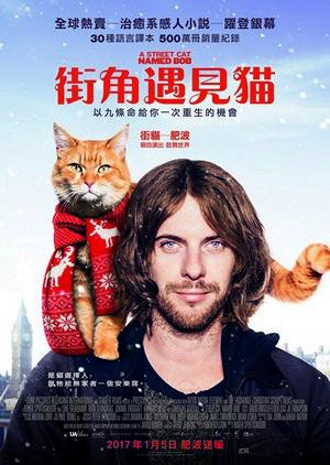 街角遇見貓電影海報