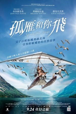 孤雁和你飛電影海報