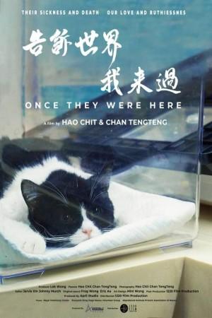 告訴世界我來過電影海報